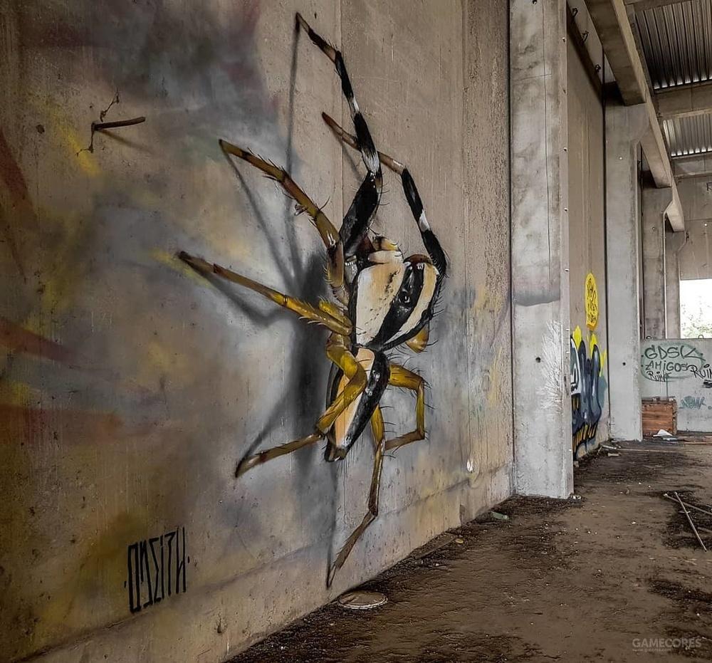 昆虫警告!葡萄牙街头艺术家的立体涂鸦
